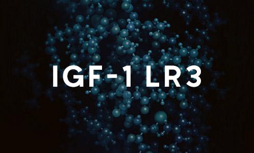 IGF-1 LR3 Que Es
