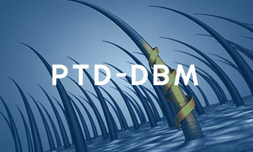PTD-DBM Que esjpg