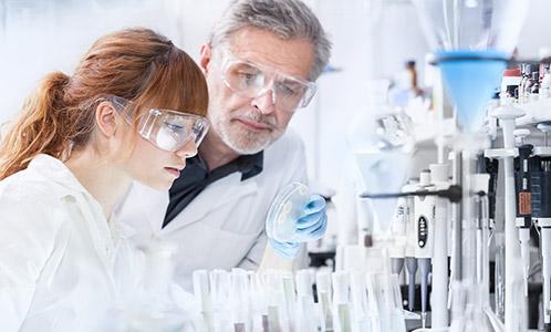 Peptidos Para Perder Grasa Investigación